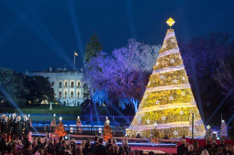 Главная рождественская елка в Вашингтоне, США.