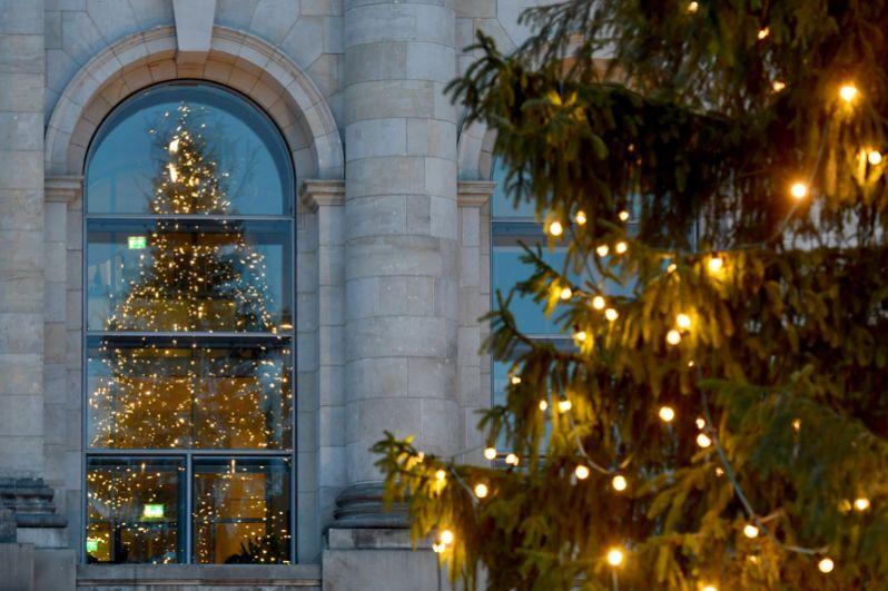 Рождественская елка перед зданием Рейхстага в Берлине, Германия.