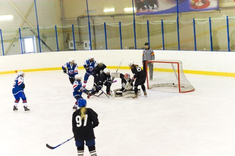 В первом сезоне в истории Лиги женского хоккея за звание чемпионов боролись 23 команды.
