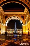 В городе установят 57 новогодних елок.