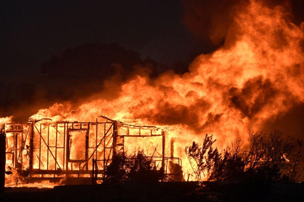 Один из множества домов, разрушенных пожаров, в округе Сильмар, Лос-Анджелес.