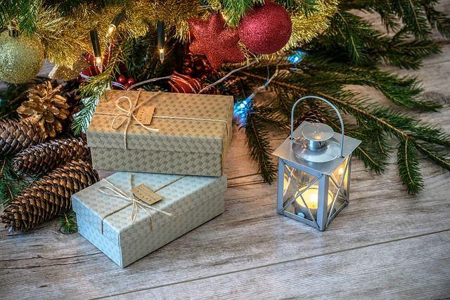 Живую новогоднюю елку вКраснодаре можно будет приобрести от500 руб.