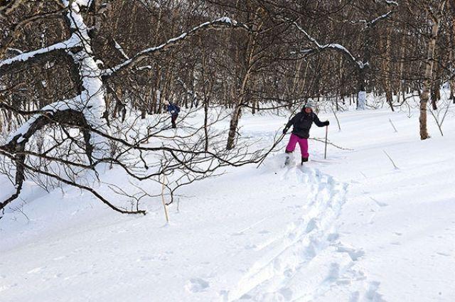 Покататься на лыжах сможет каждый омич.