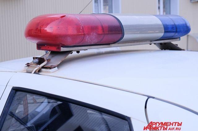 Полицейские задержали испугавшегося виновника ДТП.