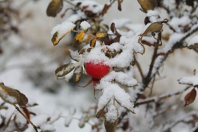 Синоптик: Ввыходные дни вУкраине резко ухудшится погода