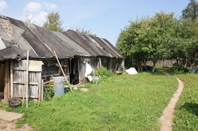Территория лагеря.