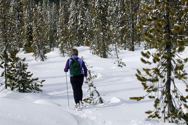 Науходящей неделе зима на100% вступит всвои права— Башгидромет