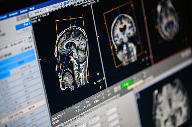 Защитник «Нью-Джерси» завещал собственный мозг для научных исследований