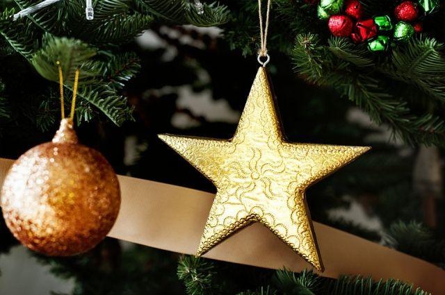 Саратовские елки будут торговать по«социальным ценам»