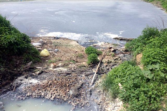 Фирму, загрязняющую лес вТюменской области, оштрафовали на2,6 млн руб.