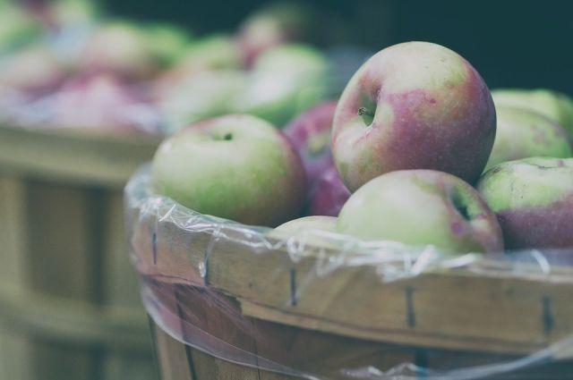 ВИзраиле наказали командира армии, укравшего яблоки упалестинских торговцев