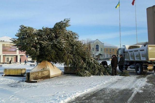 ВЗолотоноше «поломалась» главная елка города