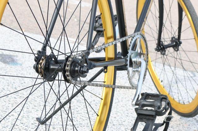 В Тюмени Цветной бульвар закроют для велосипедистов