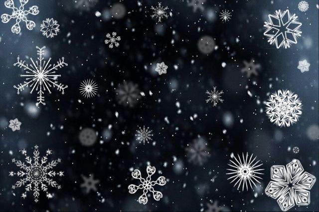 Липчане встретят «Бумажный Новый год»