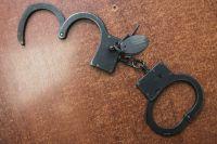 Двое орчан задержали рецидивиста во время ограбления женщины.