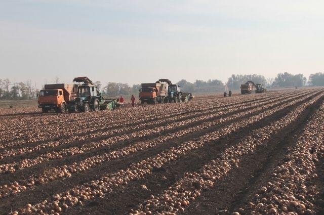 Кабмин выделил 2 млрд руб. наподдержку разработчиков сельхозтехники
