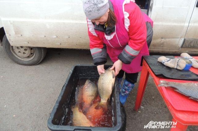 100% наценки на рыбу обеспечивают затраты на различные справки.