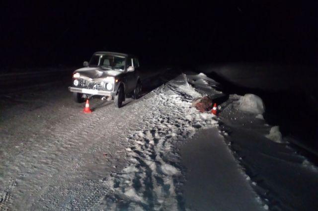 В Тазовском районе водитель «Нивы» насмерть сбил пешехода