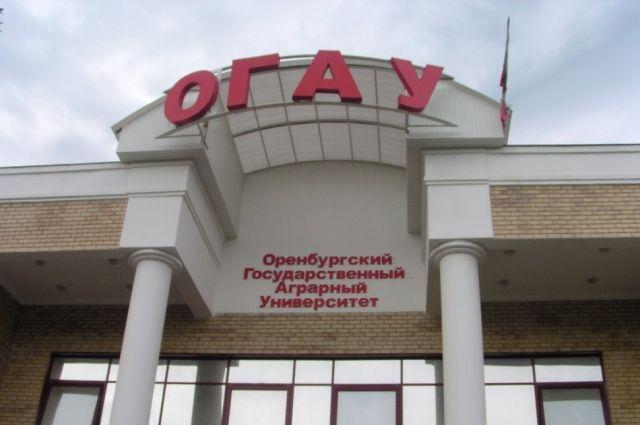 Одного из деканов ОГАУ и его зама отстранили от работы из-за взятки.