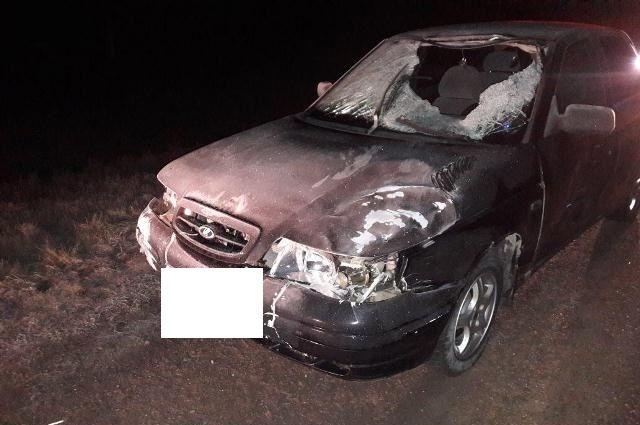ВГеоргиевском округе водитель-новичок задавил насмерть 17-летнего молодого человека
