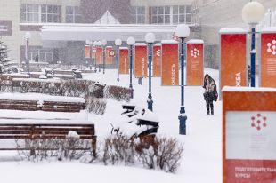 Самый сибирский университет.