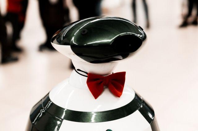 Вот такие галантные роботы встречают иркутян.