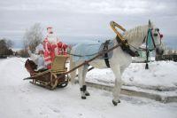 Дед Мороз ездит в упряжке лошадей, в отличие от Санта Клауса, который летает на санях с оленями.