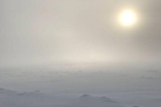 Таяние льдов в Арктике достигло рекордных за 1500 лет темпов