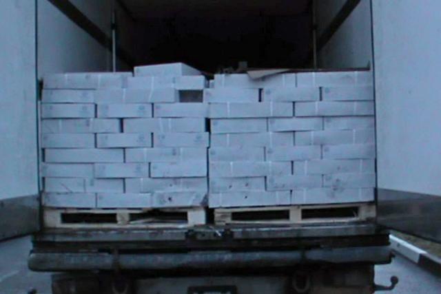 Таганрогские пограничники уничтожили неменее 19 тонн рыбы