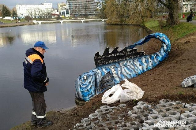 На берегу пруда в Калининграде установили огромную железную рыбу.