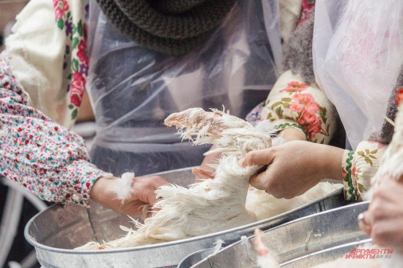 В этот день юноши и девушки коллективно щипали гусей и заготавливали мясо птицы на зиму.