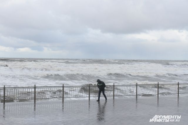 ВТихом океане уберегов Камчатки предполагается шторм