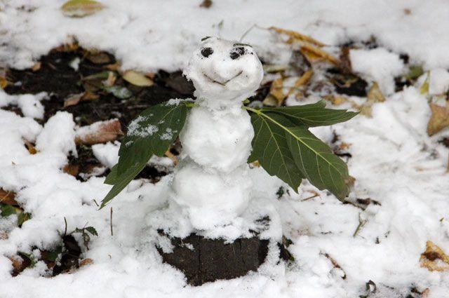 В Иркутске потеплело.
