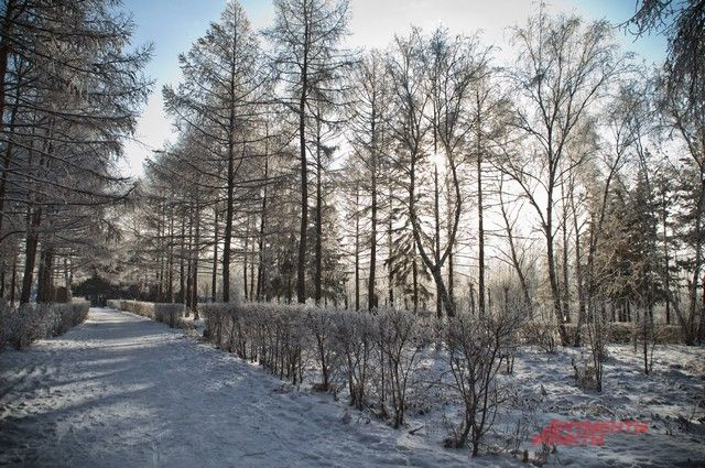 В регионе открыли уже две ледовые переправы.