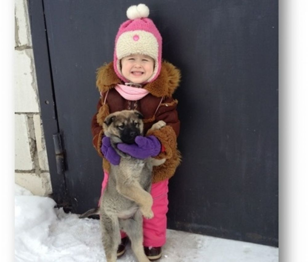 30. Надежда Погадаева. Мой самый верный друг- это щеночек по имени Барс. Однажды зимой мы увидели бездомного маленького щенка. 4-летней Маше стало жалко оставлять его в одиночестве на морозе. С тех пор прошёл год и наш Барс живёт с нами. Он стал любимым питомцем. На память о первом дне знакомства осталась эта фотография.