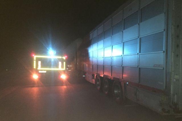 На трассе Оренбург-Орск спасены замерзающие водители грузовика.