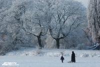 Перед новым годом особенно хочется снега!