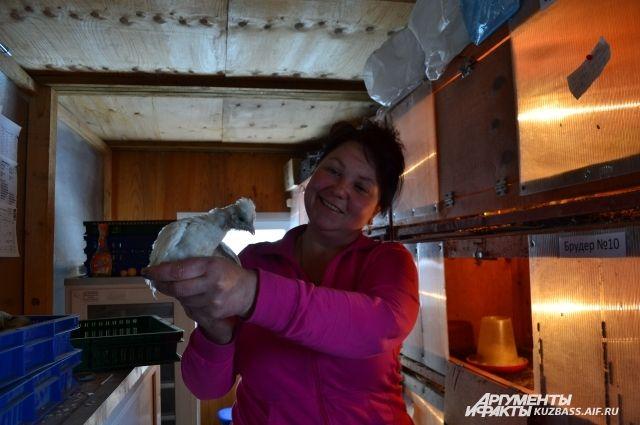Алена Филина считает хозяйство своим хобби, а не работой.