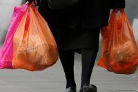 Киевсовет призывает Раду запретить использование полиэтиленовых пакетов