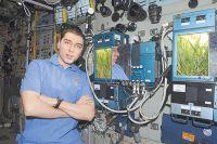 Космонавт Сергей Волков и оранжерея «Лада». Фото: