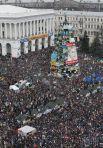 Такой всем запомнилась главная новогодняя елка страны на Майдане, Революция Достоинства 2013-2014 гг.