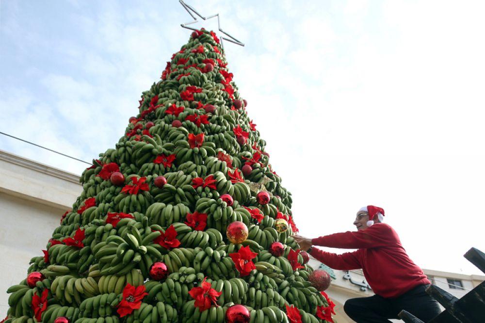 Елка из бананов в районе Дамур к югу от Бейрута, Ливан. 19 декабря 2017 года.