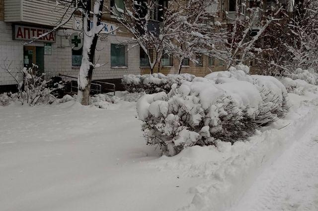 На выходных Украину ожидает снег и мороз - метеорологи