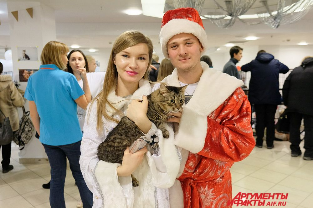 На фестивале гостей приветствовали Дед Мороз и снегурочка с большим котом, с которыми многие не упустили возможности сфотографироваться.