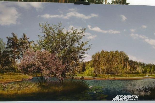 Проект реабилитации Лебяжьих озер