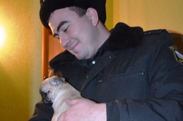 Оренбургская семья едва не лишись щенка мопса из-за долгов за тепло.