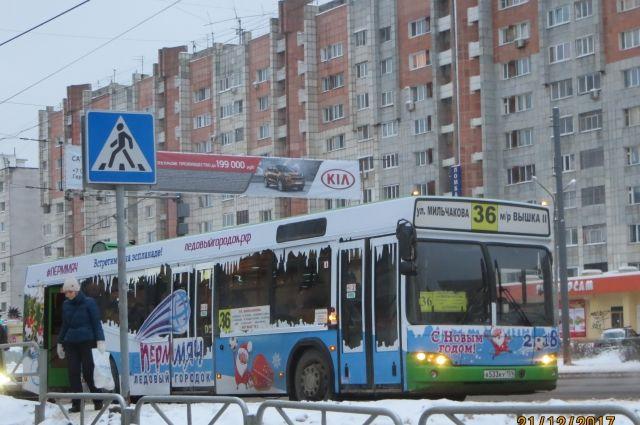 На борта автобусов нанесена символика праздника и новогоднего городка.