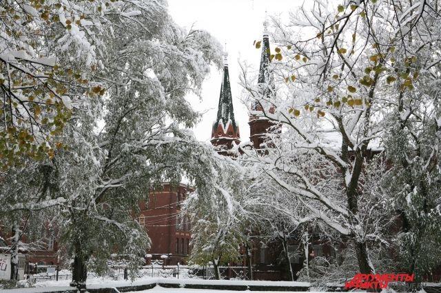 Снежная зима - мечта большинства калининградцев.
