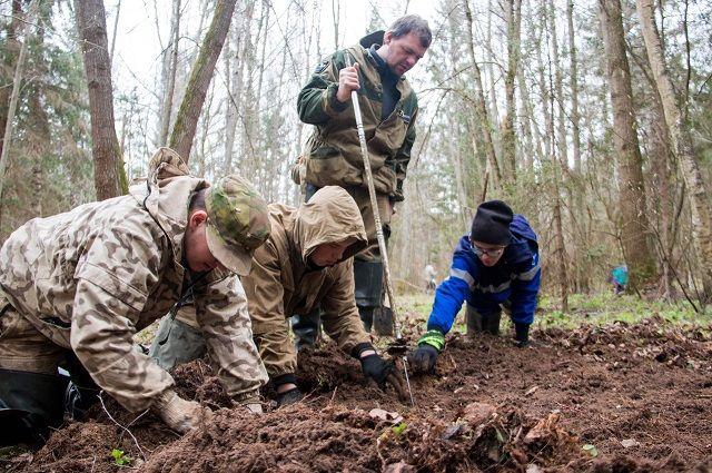 Развязка на«Экспофорум» пройдет вобход воинских захоронений— КРТИ
