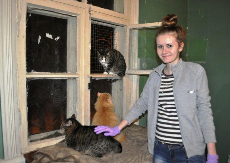 Волонтеры помогают ухаживать за животными